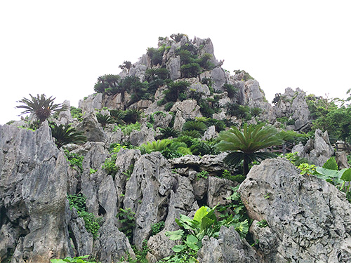 壮大な悟空岩