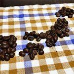 コーヒー豆と政治家