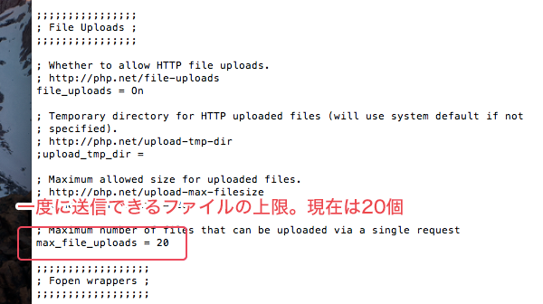 一度にアップロードできるファイル数の設定例