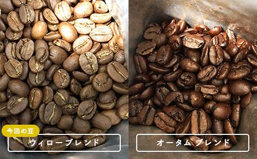 コーヒー豆の比較